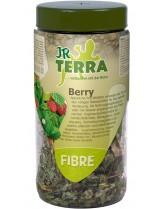 JR Farm Terra Fibre Berry - лакомство за влечуги - листа от Ягоди - 25 гр.
