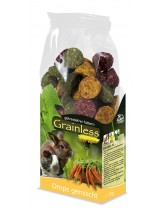 JR Farm - Беззърнена допълваща храна за гризачи микс - 140 гр.