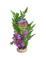 Sydeco Fiesta Aqua Seagrass  - изкуствени аквариумни растения - 26 см.  3502733802083