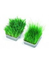 Karlie Bio Grass soft - мека котешка трева