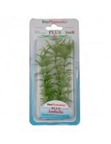 Tetra - Ambulia - Изнуствено растение за аквариум - XL 38 см.