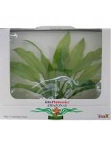 Tetra - Amazonas - Изнуствено растение за аквариум - M