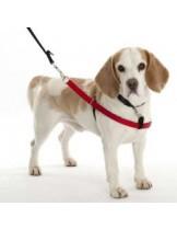 WALKEZEE - Нагръдник против дърпане за безотказен контрол на вашето куче - XL –  черно/червено