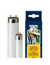 Ferplast Aquasky/Toplife 39W T5 - лампа за изпъкване цветовете на рибите в аквариум - 85 см.