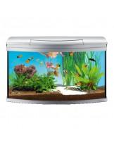 Tetra - AquaArt Evolution Line - Напълно оборудван аквариум с модерен дизайн - 770x380x482 мм. - 100 л.