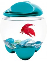 Tetra - Betta AguarIum BUBBLE - кръгъл аквариум за бета - 1.8 л. - син