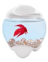 Tetra - Betta AguarIum TURKIS  - кръгъл аквариум за бета - 1.8 л. - бял