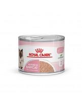 Royal Canin Mother and Babycat - за кърмещи котки и малки котенца от отбиване до 4 месечна въраст - 195 гр.