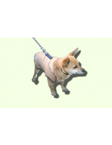 Dogyfashion - дрешка за куче -  Елек с караул, Размер 3, пинчер