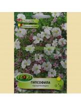 Гипсофила/ Gypsofila elegans mix - (едногодишни цветя)