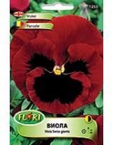 Виола  Червена/ Viola Alpenglow - (двугодишни цветя)