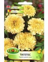 Тагетес Бял/ Tagetes erecta nana - (едногодишни цветя)