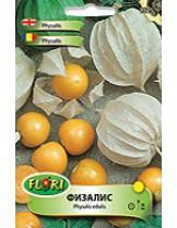Физалис/ Physalis edulis - (едногодишни цветя)