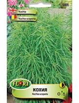 Кохия/ Kochia scoparia - (едногодишни цветя)