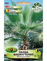 Палма Вашингтония/ Washingtonia filifera - (многогодишни цветя)