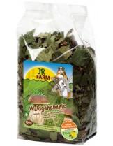 JR Farm - Специалитет, лакомство - Горска тайна за гризачи - 100 гр.