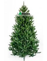 Коледна елха Alpina Натурален Смърч - 120 см.