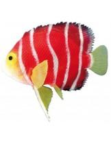 "Nobby - Fantasy Decor ""SKALAR"" - Декорация за аквариум - 11 см."