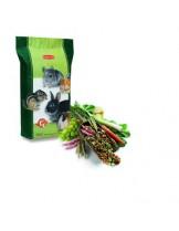 Padovan - Пълноценна храна за гризачи с плодове и зеленчуци - 18 кг.