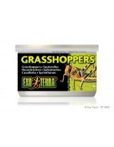 Exo Terra - Grasshoppers - консервирани щурци за влечуги и земноводни - 34 гр.