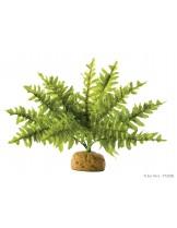 Exo Terra - Boston Fern Small - горско декоративно растение за терариум
