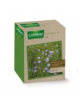 Тревна смеска - Цветна поляна от лечебен Лен - 0.520 кг. За 250 кв. м.