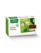 Ombre - Тревна смеска Сянка за терени засенчвани от сгради и растителност - 1 кг. - за 30 кв. м.