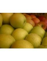 Ябълка - Златна превъзходна -  височина -1.00 - 1.10 м.
