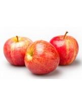 Ябълка Роял Гала - 1.50 - 2.00 м.