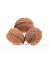 Орех Фернор (Fernor Walnut Variety) - 1.80 - 2.50 м.