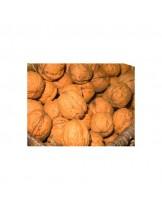 Орех Фернет (Fernette Walnut Variety) - 1.80 - 2.50 м.