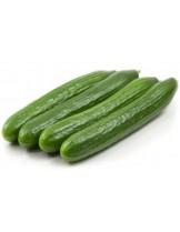 """Краставици - сорт """"Лонг Англес"""" - 2 гр. - около 35 семена в 1 гр."""