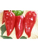 "Пипер - сорт ""Призренка"" (тип капия) - 2 гр. - около 280 - 300 бр. Семена"