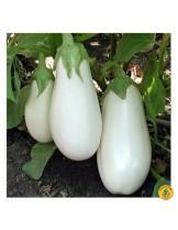 "Пталаджан - сорт ""Бял"" - 1 гр."