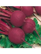 "Червено салатно цвекло сорт ""Детройт 2"" - 3 гр. - около 220 - 260 семена"